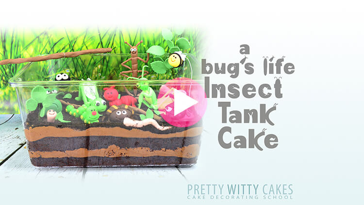 Insect Tank Cake